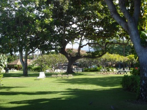 Ka'anapali Grounds