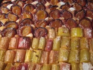 Rhubarb - Plum Cake
