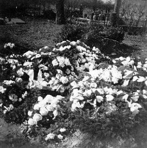 Ingrid's grave